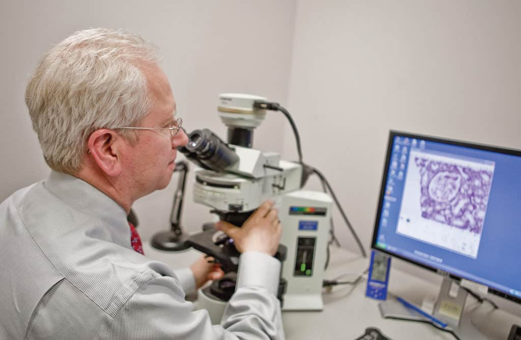 dr. linzie with microscope and computer