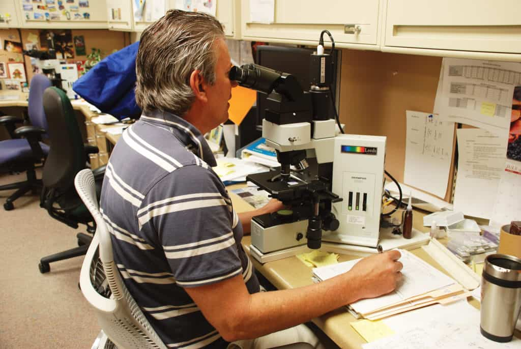 lab tech with microscope